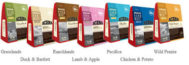 Candida Dog Food Review