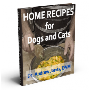 Vet Approved Homemade Dog and Cat Food Recipes