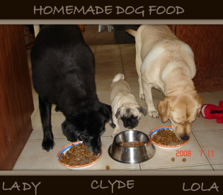Dog Food Comparison Chart - BETTER FOOD FOR DOGS